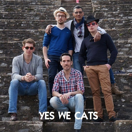 YES WE CATS_profile